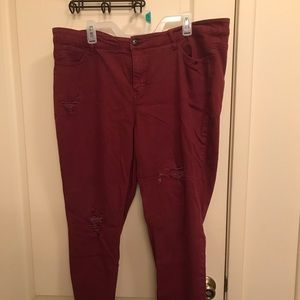 Destructed Cropped Red Jeans Plus Size 22